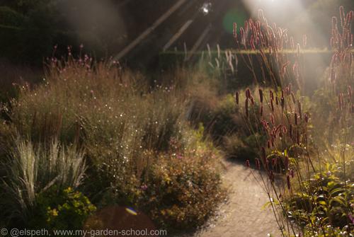 New Online Garden Design Courses Announced |