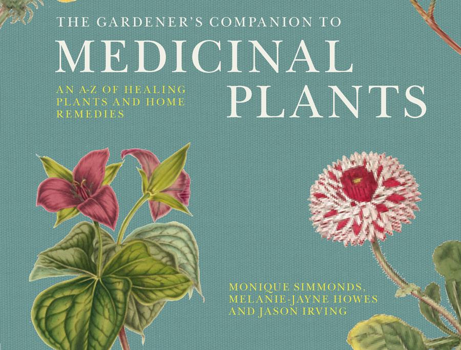 Introduction to medicinal plants   Term paper Sample - bluemoonadv com